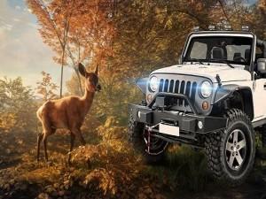 Animal Hunters: Safari Jeep Driving